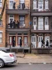 Les juifs Hasidim prient dans les rues pour la Pâque