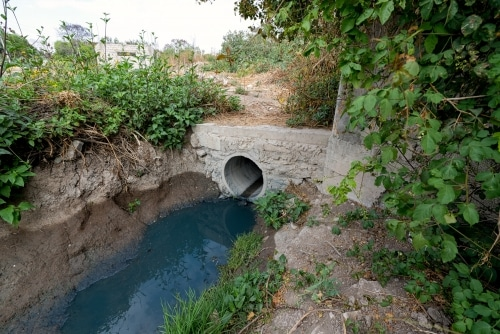 L'eau bleue de Tehuacan